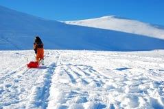 女孩少许雪橇 库存照片