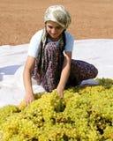 女孩工作 免版税图库摄影