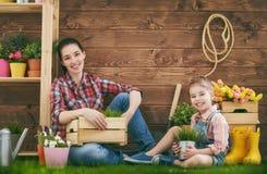 女孩帮助她的母亲 免版税图库摄影