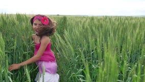 女孩幸福 女孩少年沿一个绿色领域跑用麦子 夏天童年幸福少年 股票视频