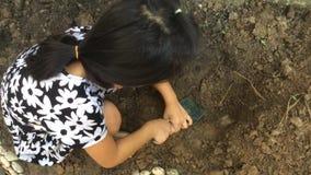 女孩开掘土壤 影视素材
