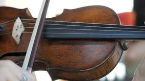 女孩弹小提琴在婚礼庆祝 影视素材