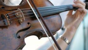 女孩弹小提琴在婚礼庆祝 股票视频