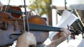 女孩弹小提琴在婚礼庆祝 股票录像