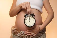 女孩怀孕的射击工作室 库存照片
