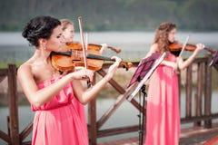 女孩戏剧小提琴 免版税库存图片