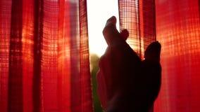 女孩打开红色帷幕和使用用他的手通过太阳` s光芒 手特写镜头 股票视频