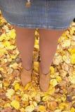 女孩投下了圆环 在秋天叶子设法找到他,但是金黄叶子掩藏了珠宝 库存照片