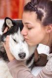 女孩拥抱一条西伯利亚爱斯基摩人狗 免版税库存图片