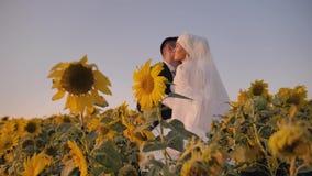 女孩拥抱她向日葵的一个美好的领域的心爱的年轻人 她穿一件美丽的白色礼服 股票录像