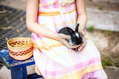 女孩拿着在篮子的一个兔宝宝 免版税库存照片