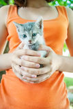 女孩拿着猫 库存图片
