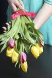 女孩拿着黄色和桃红色郁金香花束  花栓与在弓的一条红色丝带 免版税库存图片
