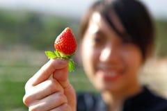 女孩挑库草莓 库存图片