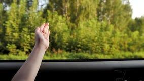 女孩捉住从车窗的空气 股票视频
