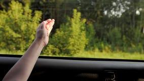 女孩捉住从车窗的空气 股票录像