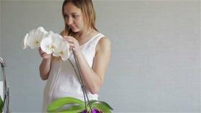 女孩接触用手享用花开花的群的白色兰花的瓣 影视素材