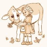 女孩提供的母牛 免版税图库摄影