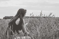 女孩收获在领域的麦子小尖峰 免版税图库摄影