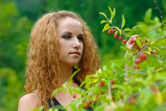 女孩收集莓果 免版税库存照片