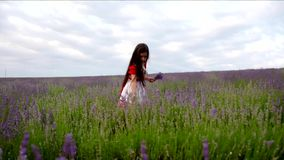 女孩收集淡紫色 股票视频