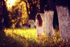 女孩收集花 免版税图库摄影