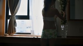 女孩放花入花瓶在镜子附近在旅馆里 股票录像