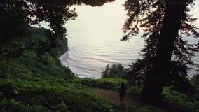女孩旅客在山森林、海海湾和波浪里下来峭壁小山 热带植物,树 股票录像