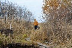 女孩是在森林春天 免版税库存图片