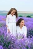 女孩是在淡紫色花田,美好的夏天风景 免版税库存照片