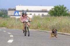 女孩有爱犬的骑马自行车 库存照片