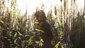 女孩横跨芦苇和柳树的领域走在尘土 影视素材