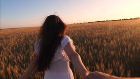 女孩横跨领域跑用握在落日的强光的麦子一只人` s手并且笑 慢的行动 影视素材
