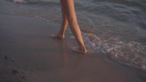 女孩沿在日落的海滩走 股票视频
