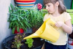 女孩浇灌的沙拉微笑 免版税库存照片