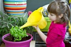 女孩浇灌的蓬蒿植物微笑 免版税库存照片