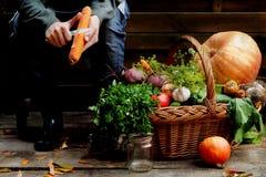 女孩清洗在菜旁边篮子的一棵红萝卜  库存照片