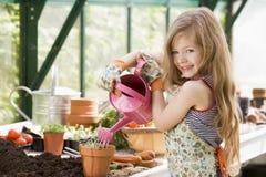 女孩温室植物盆的浇灌的年轻人 免版税图库摄影