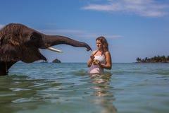 女孩游泳与大象 免版税库存照片