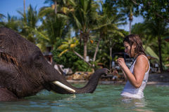 女孩游泳与大象 图库摄影