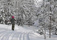 女孩滑雪 图库摄影
