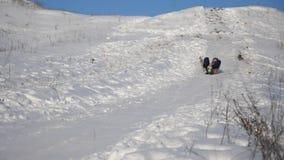 女孩滚动下来在雪橇的小山在雪 女孩戏剧在冬天在公园 慢的行动 影视素材