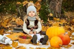女孩用在秋天背景的南瓜 免版税库存照片