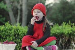 女孩用草莓 有一个红色帽子的女孩 图库摄影