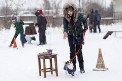 女孩由在街道上的杰克罗素教练在冬天, 免版税库存图片
