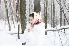 女孩的冬天纵向 免版税库存照片