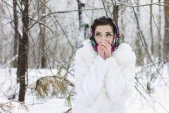 女孩的冬天纵向 免版税库存图片