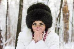 女孩的冬天纵向 免版税图库摄影
