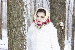 女孩的冬天纵向 库存照片