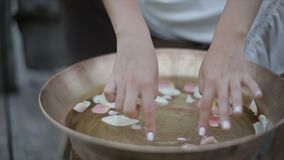女孩的手接触玫瑰在一个圆的木盆的花瓣 股票录像